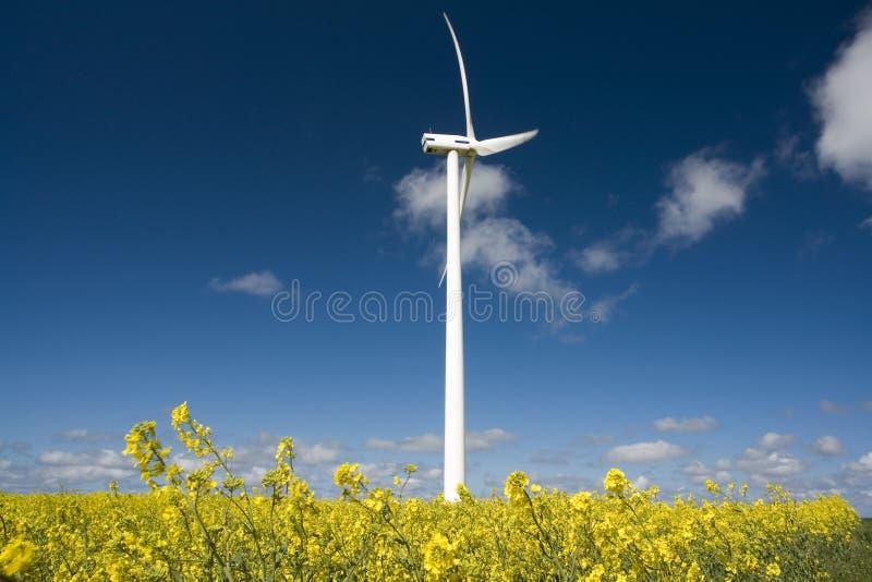 prądnica siła wiatru zdjęcia royalty free