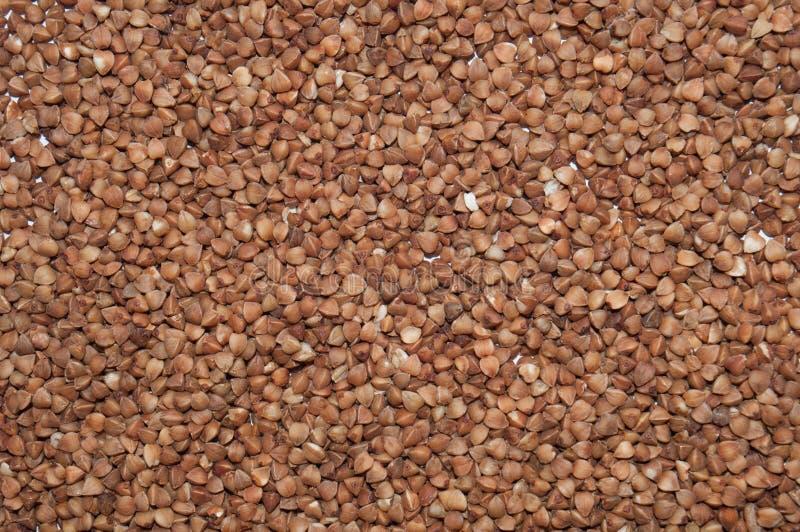 Pr?mio escuro do trigo mourisco da textura Conceito saud?vel comer fotos de stock royalty free