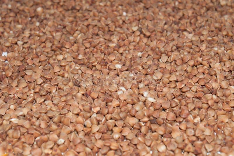 Pr?mio escuro do trigo mourisco da textura Conceito saud?vel comer fotografia de stock