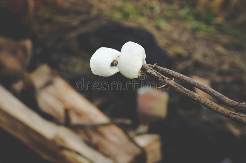 Prażaków marshmallows przy ogniskiem na gospodarstwie rolnym fotografia royalty free