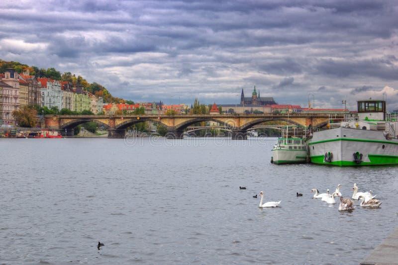 Praag, Vltava-rivier, Hradcany-kasteel - St Vitus Cathedral royalty-vrije stock foto's
