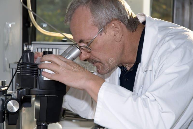 praca laboratoryjna obrazy stock