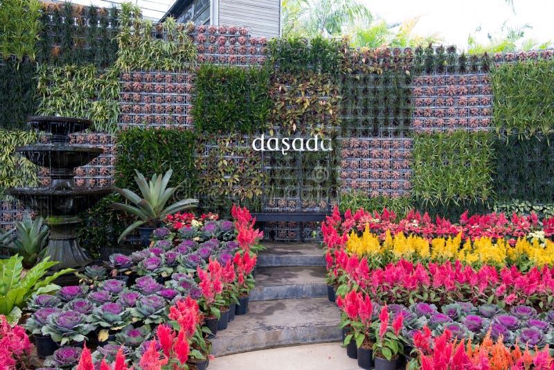 Prachinburi,泰国January11,2018:在Dasada画廊的美好的花和植物显示 库存照片