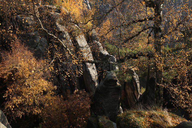 Prachov岩石在中波希米亚州,捷克 免版税库存照片
