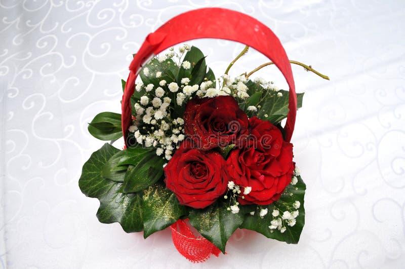 Pracht der roten Rosen seiner Schönheit und Frische lizenzfreies stockbild