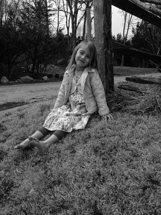 Pracht im Gras lizenzfreie stockfotografie