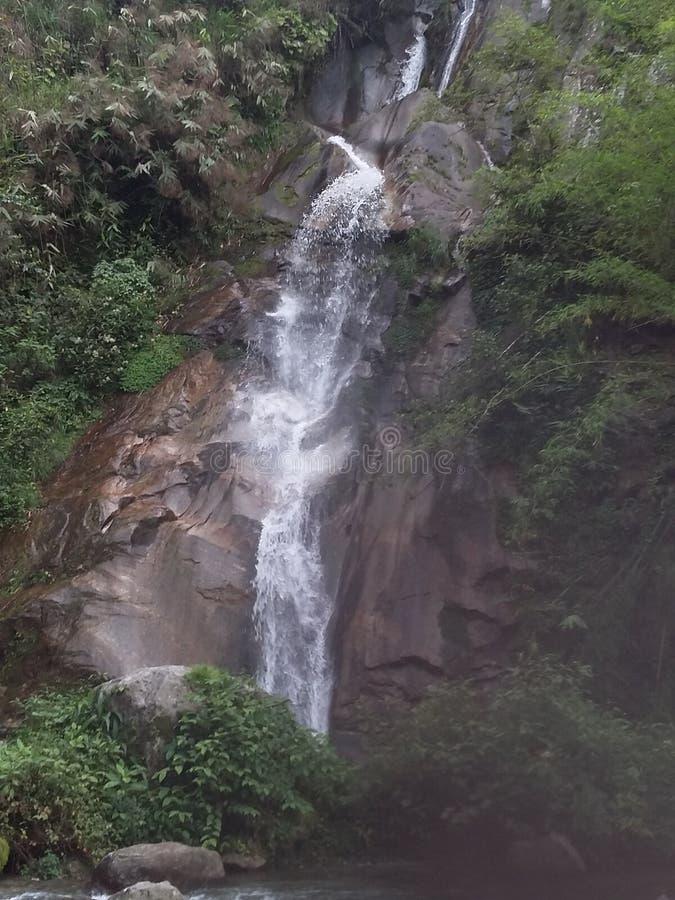 Pracht im Monsun stockfotos
