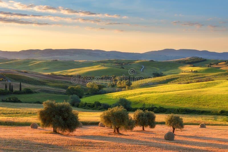 Prachtig de lentelandschap bij zonsopgang Mooie mening van typisch Toscaans landbouwbedrijfhuis royalty-vrije stock foto's