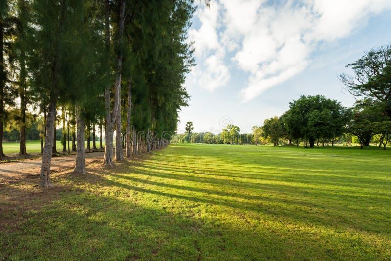 Prachtig en adembenemend groen parklandschap in de ochtend royalty-vrije stock foto