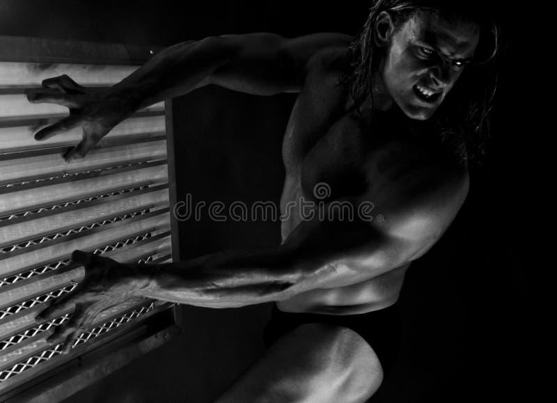 Prachtig gebeeldhouwde bodybuilder royalty-vrije stock fotografie