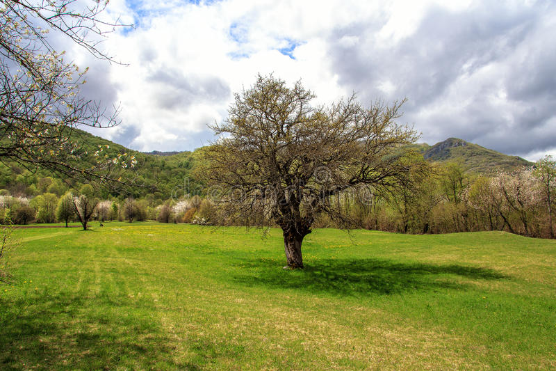 Prachtig Landschap royalty-vrije stock fotografie