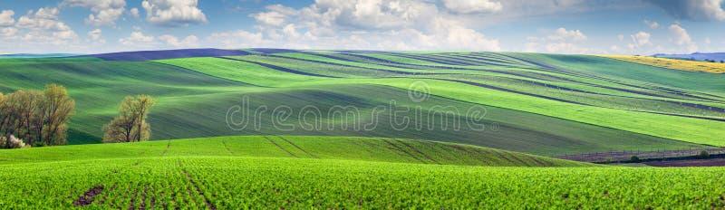 Prachtig panorama van gebieden in mooie kleurrijke vallei stock afbeeldingen