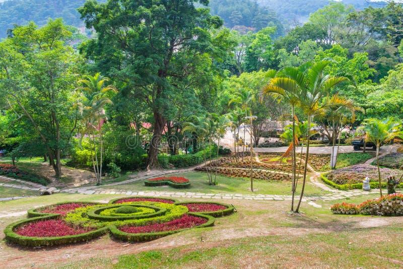 Prachtig tropisch park met palmen en bloemen in Dalat stock foto's