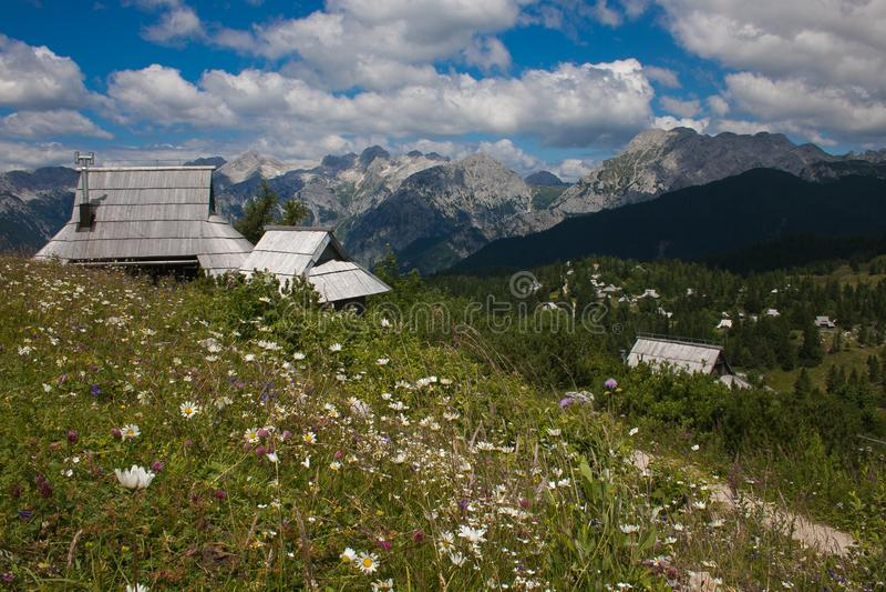 Prachtige mening van de Alpiene Weide van Velika Planina, luchtfoto van mooie aard op een zonnige dag stock foto's