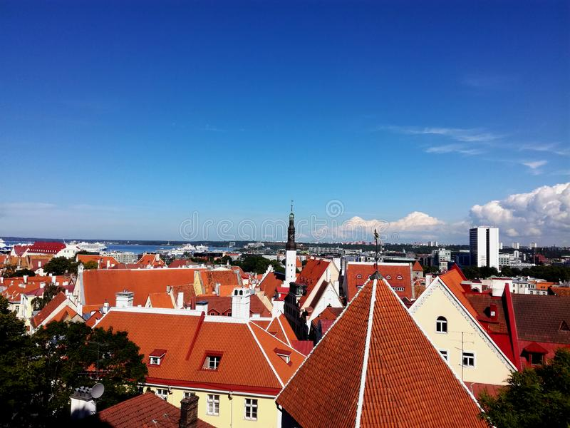 Prachtige meningen van oud Tallinn stock fotografie