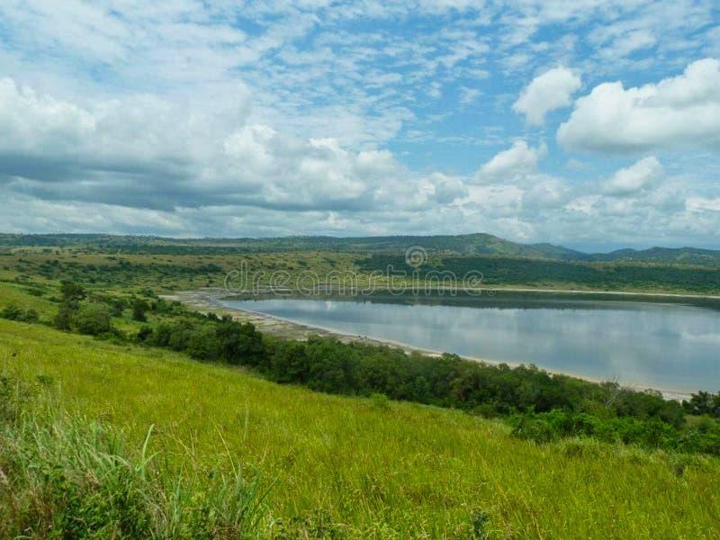 prachtige vijver in Afrika bij de zomer stock foto's