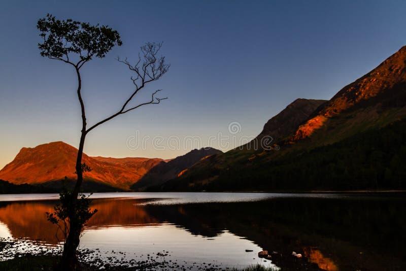 Prachtige zonsondergang bij het gloeien moutains met een spiegelmeer en een gesilhouetteerde berkboom in Buttermere Cumbria, Enge royalty-vrije stock afbeeldingen