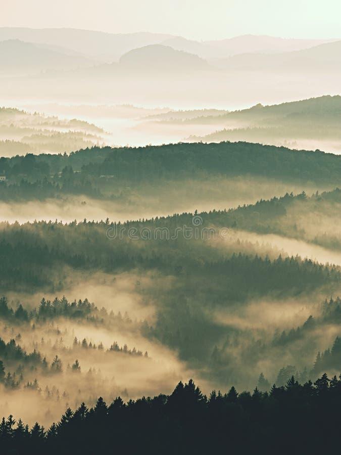 Prachtige zware mist in landschap De herfst romige mist in landschap stock afbeelding