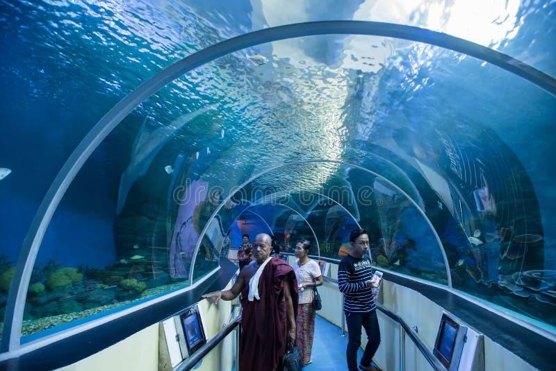Prachuap Khiri Khan Tajlandia, Kwiecień, -, 18, 2017: Pod wodnym gl fotografia royalty free
