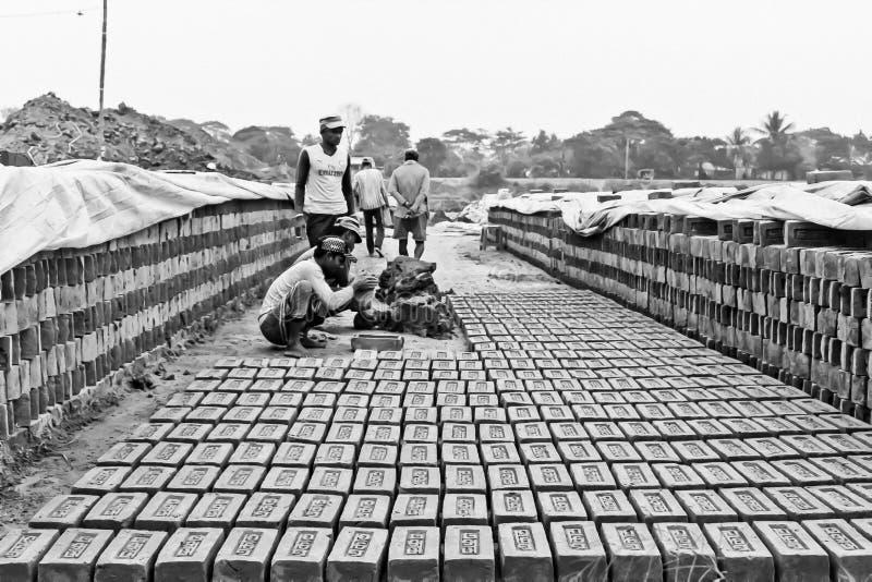 Pracownicy robią cegły z miększą ziemią w Brick Factory zdjęcie royalty free
