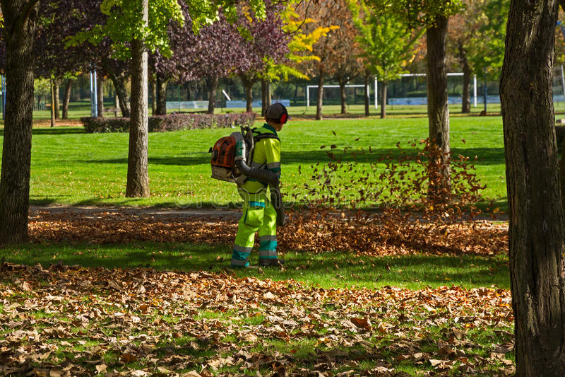 Pracownicy Rozjaśnia jesień liście na parku zdjęcia stock