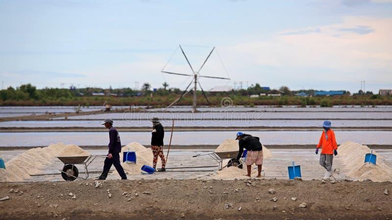 pracownicy utrzymuje solankowymi od gospodarstwa rolnego obrazy stock