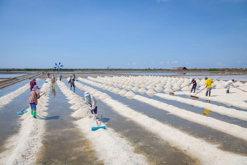Pracownicy zamiatają surową sól zdjęcie stock