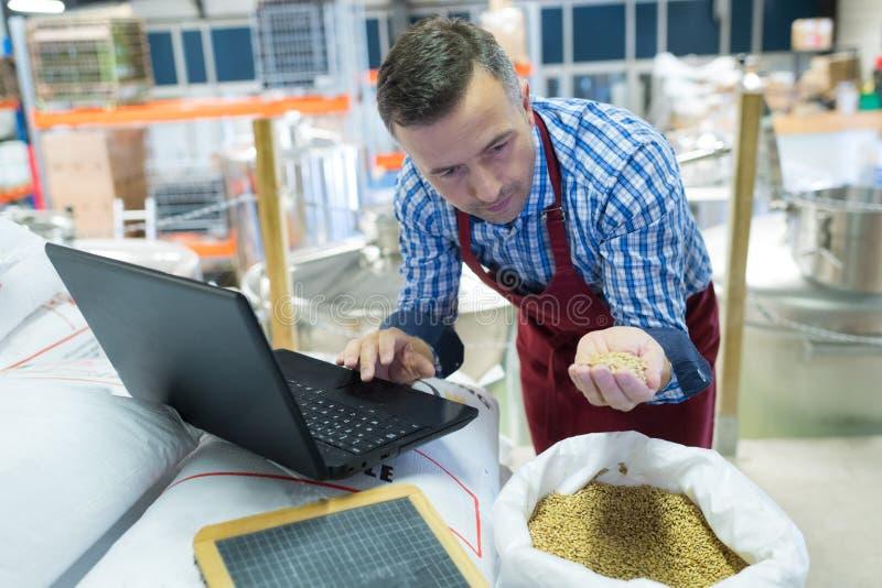 Pracownik browarni z laptopem sprawdzającym ziarno obraz royalty free