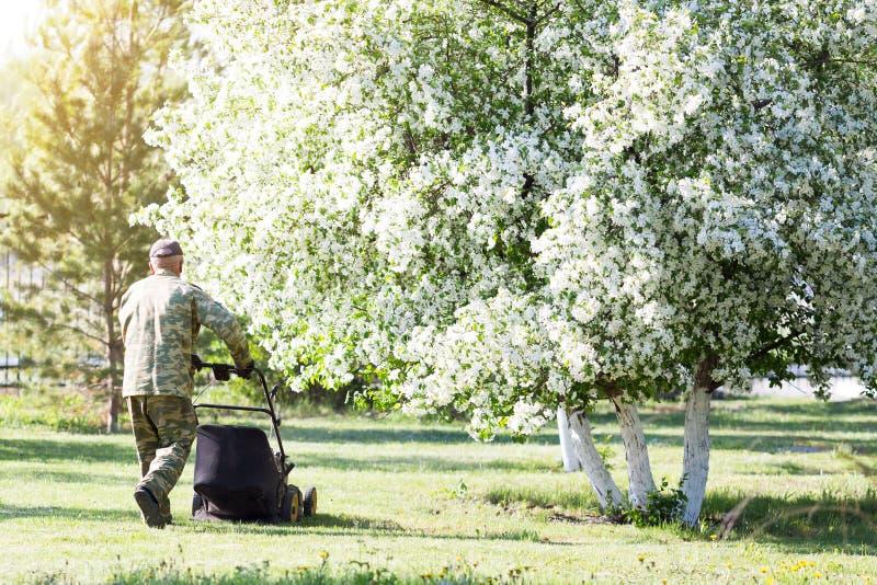 Pracownik ciie gazon w ogródzie zdjęcia royalty free