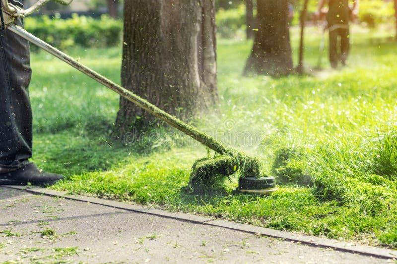 Pracownik kosi wysokiej trawy z elektrycznej, benzyny gazonu drobiażdżarką w lub Uprawiać ogródek opieki wyposażenie i narzędzia fotografia royalty free
