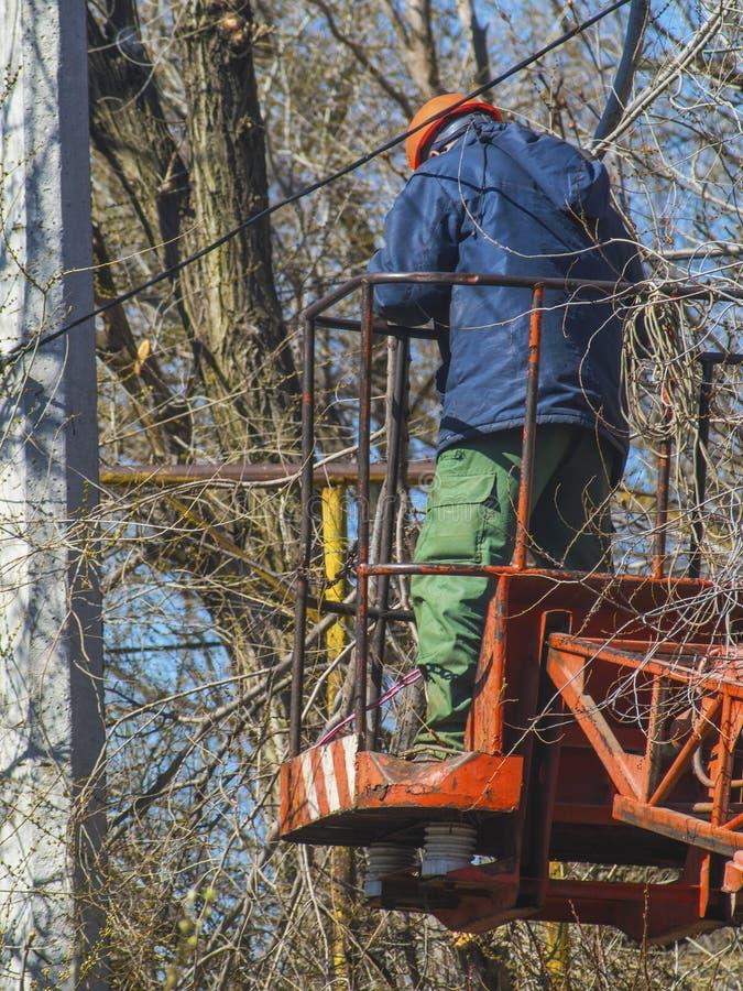 Pracownik na schodkach usuwa gałązki i obszarpujących druty obrazy stock