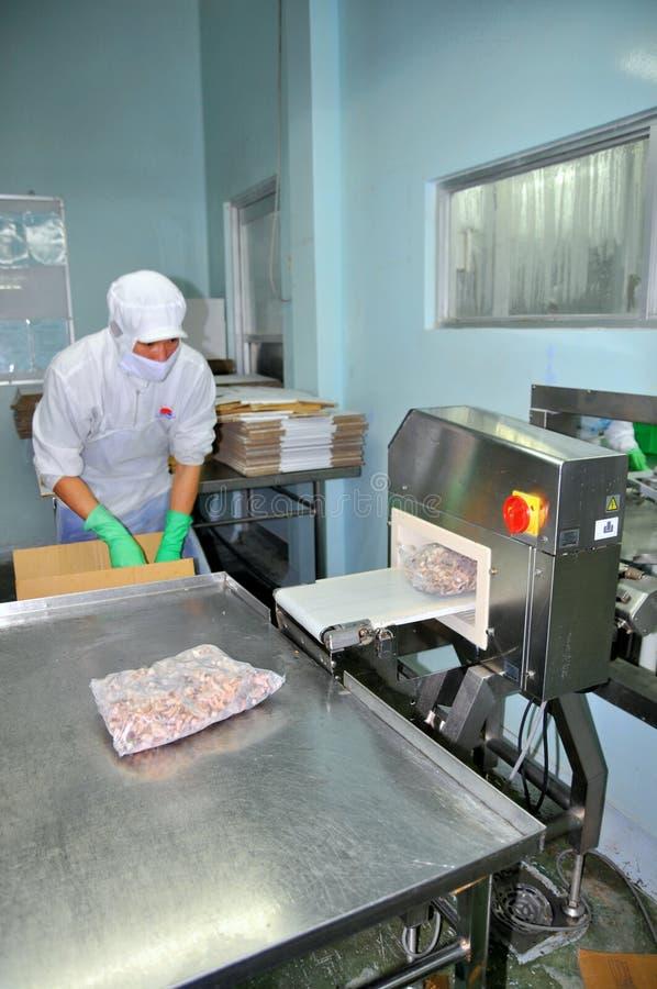 Pracownik sprawdza dla chowanego metalu w skończonym - produkty w owoce morza fabryce w Ho Chi Minh mieście zdjęcia stock