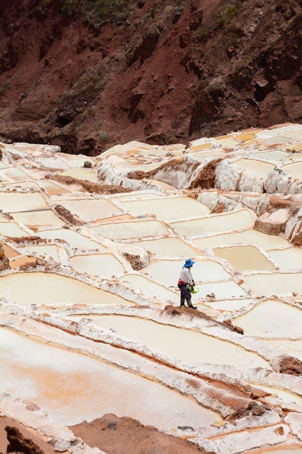 Pracownik w solankowych odparowywanie stawach Maras święta dolina Cusco region Peru zdjęcia royalty free