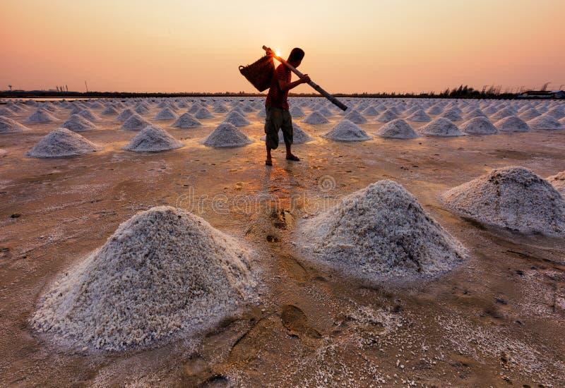 Pracownik w soli gospodarstwie rolnym podczas zmierzchu, Tajlandia fotografia stock