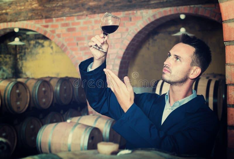 Pracownik w wino lochu obraz royalty free
