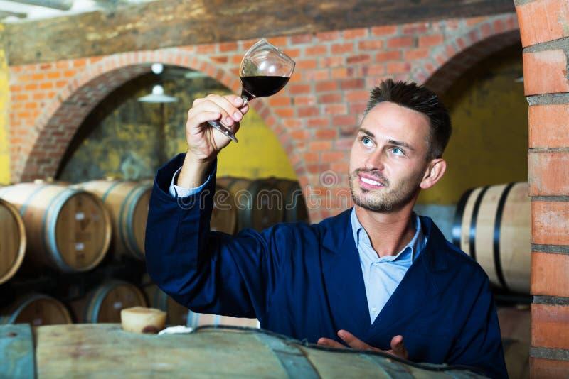 Pracownik w wino lochu zdjęcia royalty free
