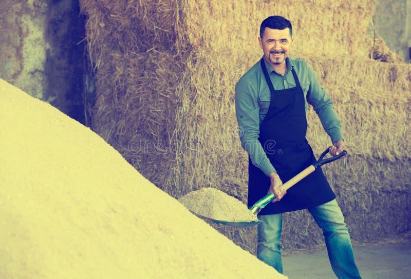 Pracownik wykopuje piasek używać łopatę zdjęcie stock
