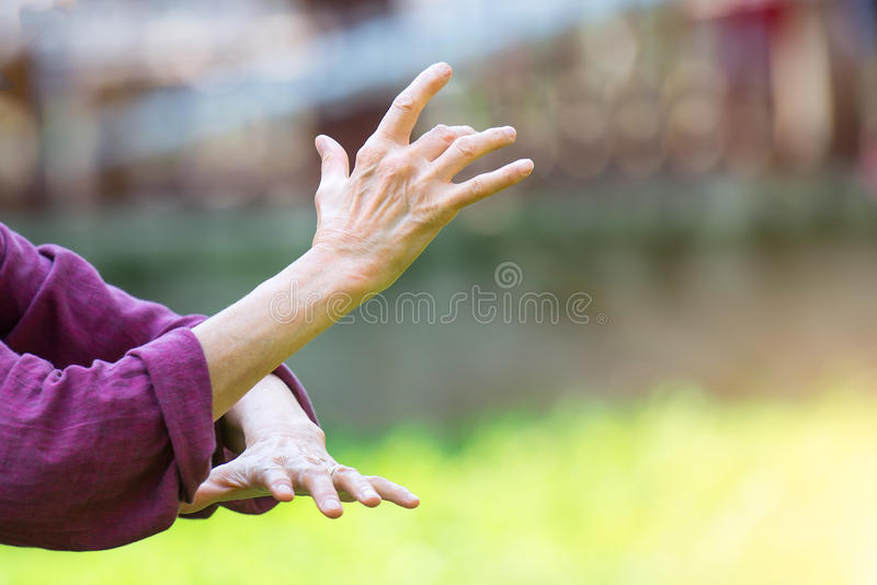 Practice of Tai Chi Chuan in outdoor stock photography