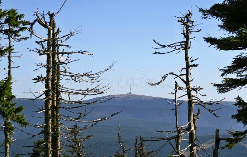 Praděd peak in Jeseníky mountains royalty free stock photography