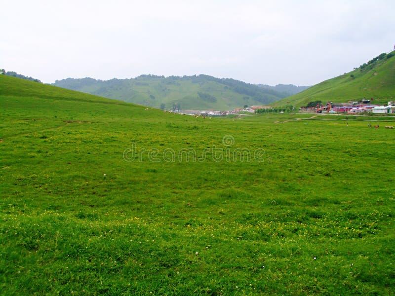 Pradaria de Baoji Guan Shan imagens de stock