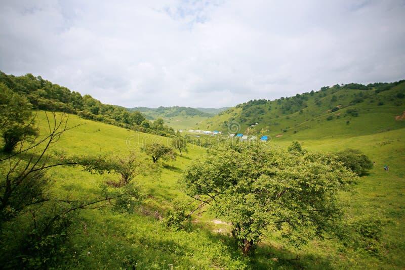 Pradaria de Baoji Guan Shan imagens de stock royalty free