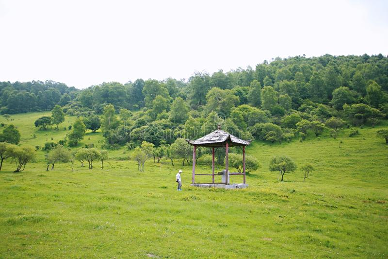 Pradaria de Baoji Guan Shan fotografia de stock