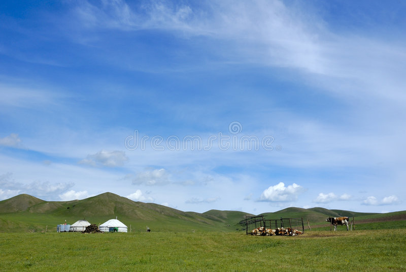 Pradaria de Inner Mongolia fotografia de stock royalty free