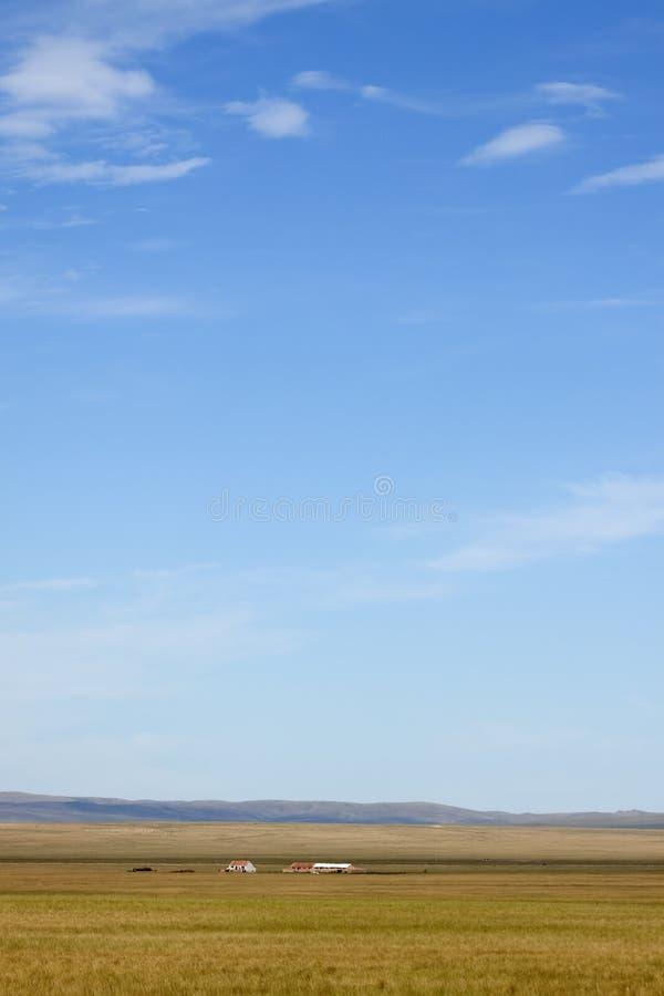 Pradarias sob o céu azul fotografia de stock
