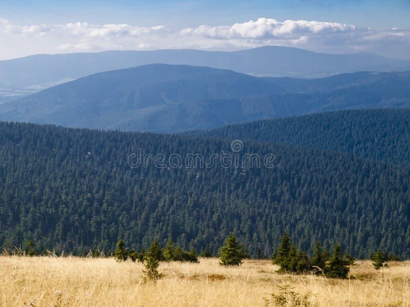 Praded, the highest mountain of Hruby Jeseník mountains. High Ash Mountains is the second highest mountain range in the Czech Republic royalty free stock photos