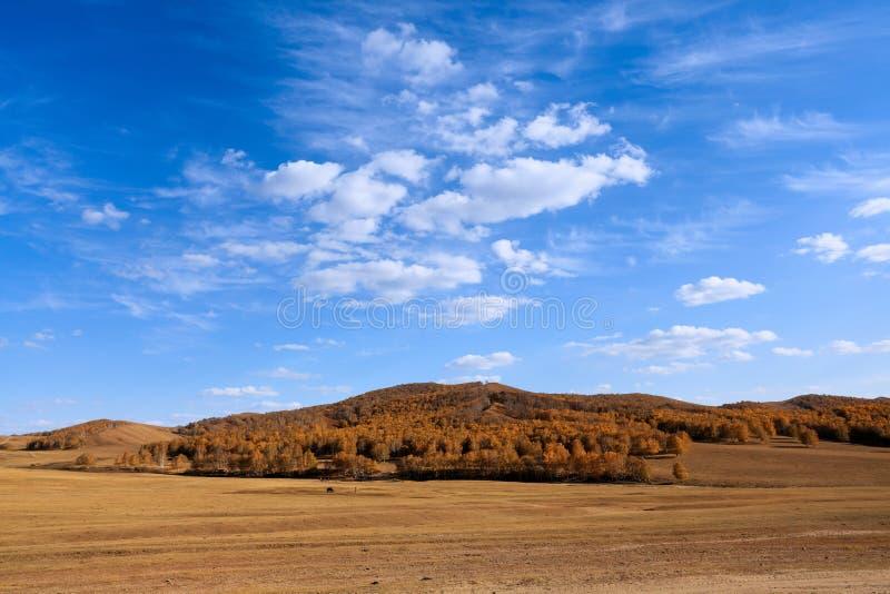 Pradera del otoño con el cielo imagen de archivo