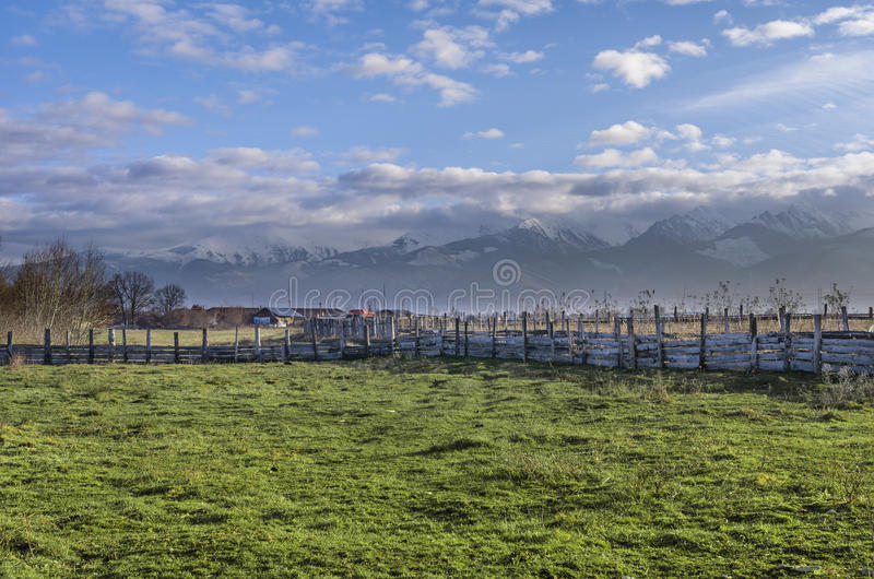 Prado al lado de las montañas cárpatas imagen de archivo