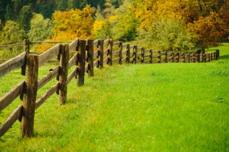 Prado bonito da grama verde com a cerca de madeira nos cumes foto de stock