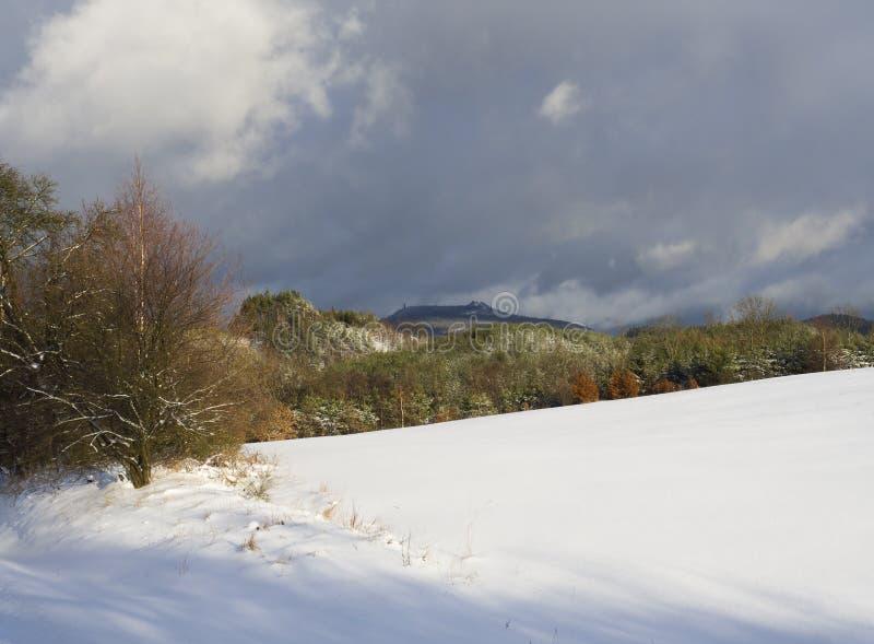 Prado coberto de neve com árvores e a floresta decidouous das coníferas e montes com torre da vigia, céu azul Paisagem do inverno fotos de stock