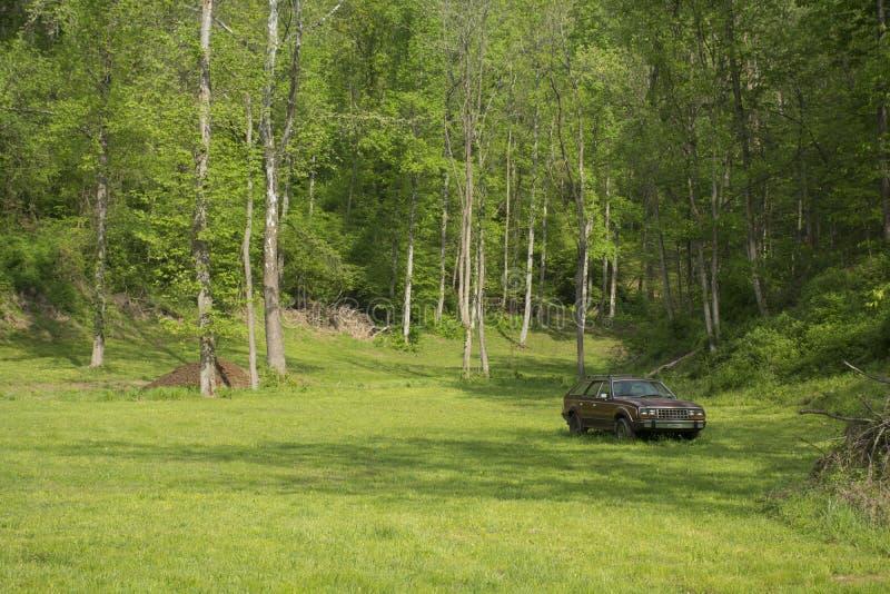Prado com árvores a e o carro abandonado fotografia de stock